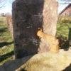 sehr großer Brunnentrog mit Stele